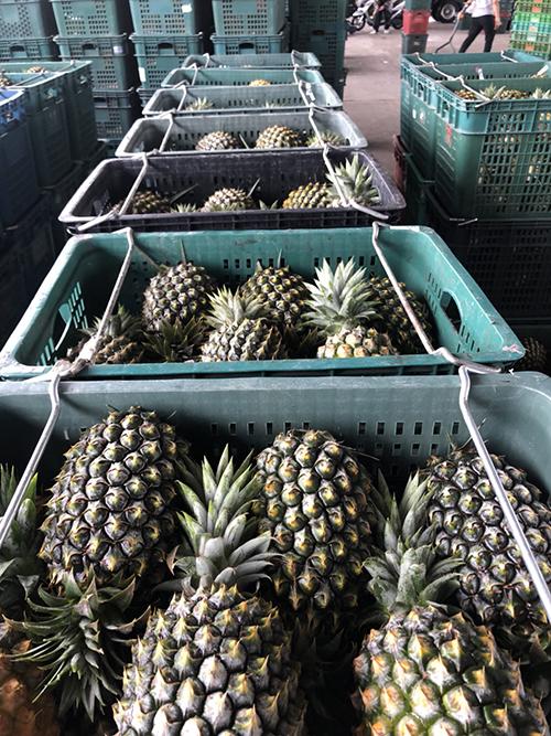用行動支持 雲林企業認購近五萬斤鳳梨