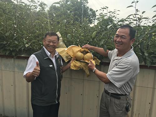 提升梨產業競爭力 台中市農業局辦國產梨穗成果會