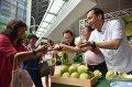 新北市長朱立倫:今年文旦柚甜度更高品質更棒 歡迎支持