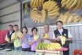 台灣的「蕉」傲 雲林香蕉成功外銷日本