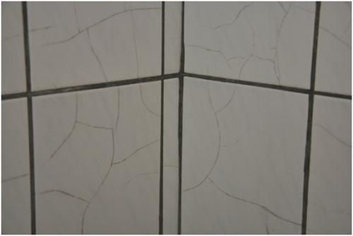 修繕前寢室淋浴間(衛生間)壁磚龜裂嚴重(207寢室)