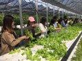 教育部實施大學社會責任實踐計畫 注入永續新能量