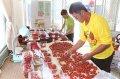 健康優質設施小果番茄競賽,16項獎嘉義縣奪14項