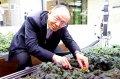 南華大學智能環控植物工場結合跨領域課程
