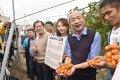 美濃橙蜜香番茄品質評鑑 高雄市長韓國瑜全力行銷