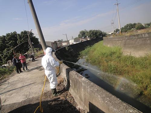 嘉義縣遭棄置52隻雞屍體 家畜所緊急送驗消毒