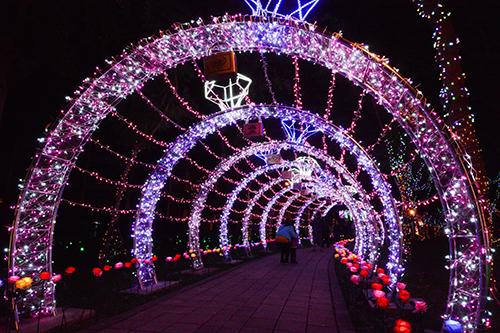 桃園燈會-情人節晚會 享受屬於情人節的浪漫燈海