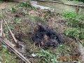 基隆市政府:露天燃燒最高可罰5百萬元!
