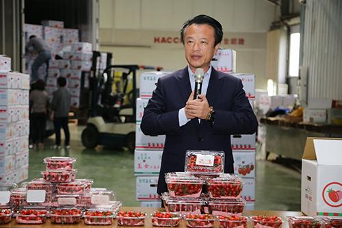 拓展農產品國際市場 「好嘉」小番茄進軍香港