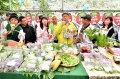 推廣白石湖觀光草莓園 台北市長柯文哲體驗北市農遊