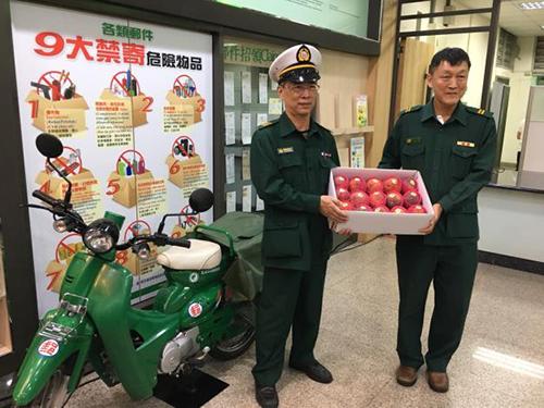 台南愛文芒果上市了 台南市政府與台南郵局共同推廣