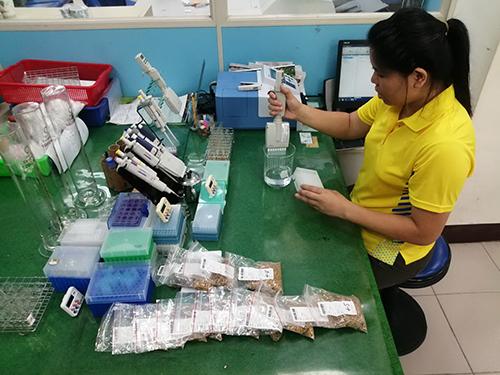 台東縣池上米殘毒檢驗合格率100%創紀錄
