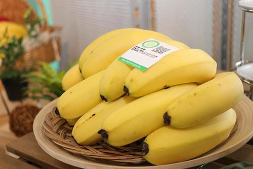 農委會持續監控香蕉價格 避免發生壟斷價格情事