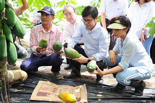 行政院副院長陳其邁訪視木瓜水傷情形