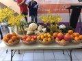 台中市柑橘、大蔥在國外也很夯 農業局赴汶萊行銷