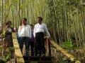 南投縣鹿谷和雅遊憩區 投入1500萬元營造環境設施