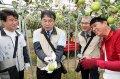 台南市長黃偉哲挽袖體驗「一日農夫」 力推蜜棗