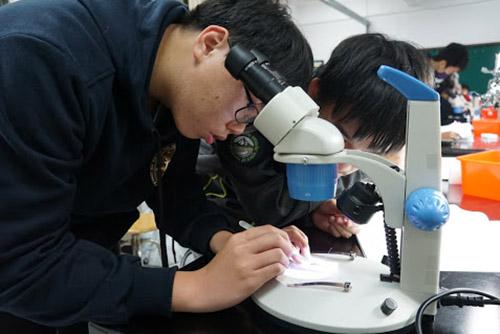 動物解剖的觀察實驗