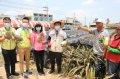 台南市長黃偉哲推薦台南鳳梨 在地企業認購1000箱