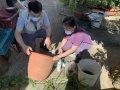 預防登革熱再起 台南市積極輔導老人機構落實防疫