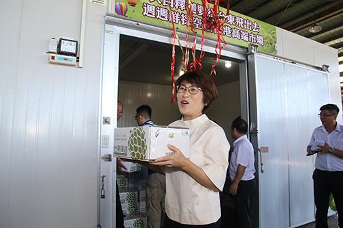 台東縣長饒慶鈴:大目釋迦週週鮮採 空運香港高端市場