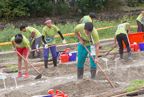 園藝科學生畦床作業