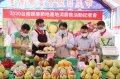 台南蔬果節登場  邀請大家來台南最大假日農市選購