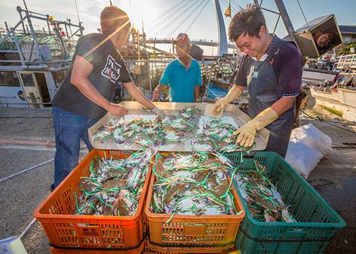 捕蟹漁民正為萬里蟹中的三點蟹進行分級處理,豐收的喜悅躍於臉上(萬里蟹攝影比賽:貳獎-利勝章-豐收的喜悅)