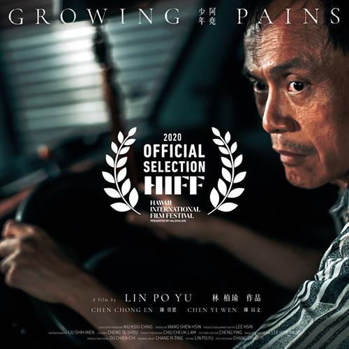 台灣電影夏威夷國際影展傳捷報 《少年阿堯》陳以文獲獎