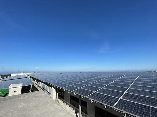 淡海輕軌拼副業多元發展 打造淡海綠色產業鏈