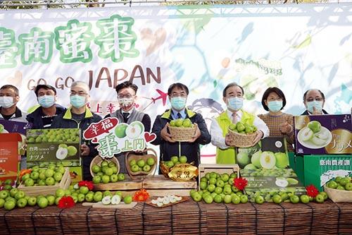台南蜜棗持續外銷日本突破去年總銷量